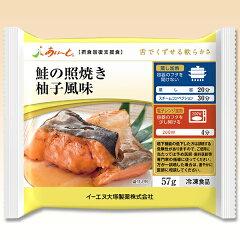 介護食 摂食回復支援食あいーと 鮭の照焼き柚子風味 59g。かむ力が低下した方でもおいしく味わ...