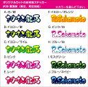 【送料無料】お名前ステッカーオリジナルカット#09 雲海体(...