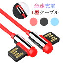 Lightning ケーブル USB Type-C ケーブル