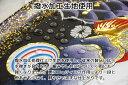 こいのぼり 千寿 鯉のぼり 2.5m 鯉4色7点 庭園用 スタンドセット 徳永鯉 千寿鯉 徳永 2