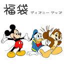 ディズニー 福袋 豪華版 キャラクター グッズ 誕生日 クリスマス プレゼント HAPPY BAG あす楽