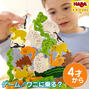 https://image.rakuten.co.jp/babygift/cabinet/haba/4478-03.jpg