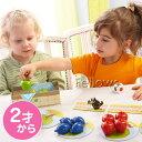 HABA ハバ社 マイファーストゲーム・はじめての果樹園 対象年齢:2歳〜 4924 プレゼント ギフト 子供 男の子 女の子
