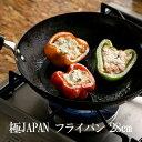 リバーライト フライパン 鉄 28cm 極JAPAN IH対応 日本製
