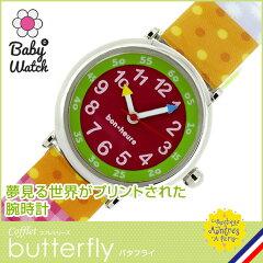 butterfly バタフライ