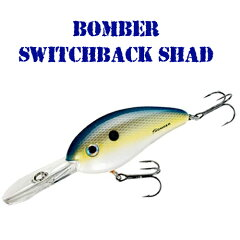 【BACKLASH/バックラッシュ 楽天店】【バス釣りなどの釣り具通販】BOMBER/ボーマーSWITCHBACK ...