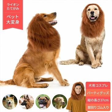 ライオン たてがみ 犬用 コスチューム ドッグウェア 冬 人間 人間用 コスプレ ネックウォーマー ペット 服 衣装 おもちゃ 忘年会 新年会 パーティーグッズ 人気 かわいい おすすめ 大型犬 中型犬 ファー ウィッグ