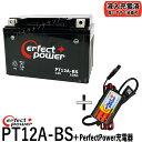 【バッテリー+P-Power充電器セット】 パーフェクトパワー ...