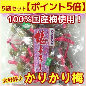 【ポイント5倍】5袋セット【かりかり梅・カリカリ梅】梅よろし風味豊かに仕上げました!個包装で携…
