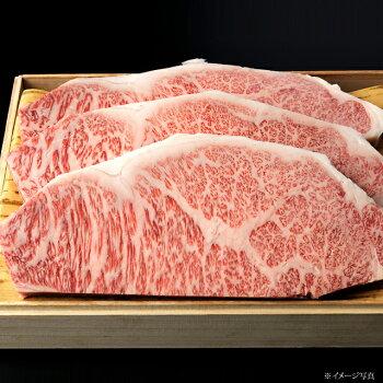 【ギフト】飛騨牛サーロインステーキ3枚[約200g/1枚]