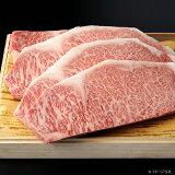 【ギフト】飛騨牛サーロインステーキ 4枚 [約200g/1枚]