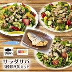 サラダサバ 3種類9食セット 無添加 uchipac 常温ロングライフ 安心安全 お惣菜の内野家 国産鶏肉 食品添加物 保存料不使用
