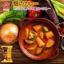アマノフーズ フリーズドライ 野菜スムージーで煮込んだ畑のカレーたっぷり野菜と鶏肉のカレー×5パック