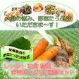 レトルト 和食 惣菜 野菜たっぷり7種類 詰め合わせセットお中元 お歳暮ギフト 【あす楽対応】