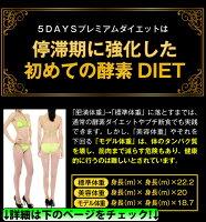 たった5日間!モデル用に開発のダイエット♪5Daysプレミアムダイエット!