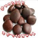 【ラッキービーンズ】モダマの豆10個セット モダマ 世界一大きい豆 もだま 藻玉 幸運のお守り 縁結び 子宝 アクセサリーパーツ ハンドメイド
