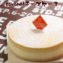 とりいさん家のCaramelチーズケーキ(4〜5人分)味わいのスイーツ ニューヨークチーズケーキ 濃厚 お菓子 デザート キャラメル 誕生日 ホールケーキ パーティー お取り寄せ バースデー 有名 ギフト サワークリーム 冷凍 ドゥーブルフロマージュ 子供 その1