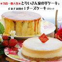テレビ、新聞、雑誌、ラジオ等でご紹介!今話題のスウィーツ!(ケーキ 誕生日 チーズケーキ お...