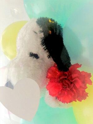 ★母の日専用商品★マザーズデイバルーンラッピング♪バルーン電報バルーンギフト母の日ぬいぐるみスヌーピーミニオンズトトロミッフィーくまのシロップスージーズーブーフくまのシロップカーネーションバルーンフラワー