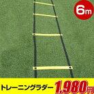 【ON+CloudNine/オンクラウドナイン】BallClubオリジナル商品トレーニングラダーOCN-106