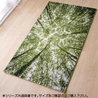トルコ製ウィルトン織カーペット『ガイアRUG』約80×140cm2346509