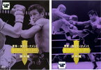 K-1 WORLD MAX 2005 世界一決定トーナメント 2枚セット 開幕戦、決勝戦【全巻 スポーツ 中古 DVD】メール便可 レンタル落ち
