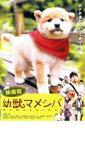 映画版 幼獣マメシバ【邦画 中古 DVD】メール便可 レンタル落ち