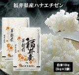 30年産福井県産ハナエチゼン10kg(5kg×2袋) お米 米 10kg 送料無料