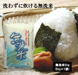 洗わずに炊ける無洗米5kg×1袋 無洗米 お米 米 5kg 送料無料 ブレンド米