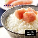 1年兵庫県産ひのひかり10kg(5kg×2袋) お米 米 10kg 送料無料