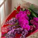 母の日贈り物 誕生日 プレゼント おまかせ 花束 [LLサイズ] ブーケ お祝い お見舞 即日発送 送料無料