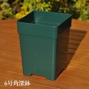 【企業限定】プラ箱 60 サイズ(黒)(5個セット・送料無料)トロ舟 トロ箱 ビオトープ プラ舟