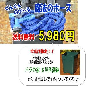即納OK!!【送料無料】6号角深鉢が付く!ぐんぐんのび〜る!魔法のホース