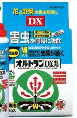 {殺虫剤}オルトランDX粒剤 1kg ※土と同梱可※(1袋まで)※ ZIK-10000