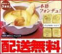 チーズフォンデュ鍋・チョコレートフォンデュ鍋シャルウィフォンデュ電気ヒーター付きフォンデュ セット日本製/電気フォンデュ鍋