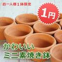おしゃれで可愛いミニ素焼き鉢 ≪植木鉢/陶器鉢/テラコッタ/素焼き鉢≫...