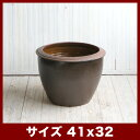 【メーカー取寄せ品】ロータス A02 Sサイズ ≪真焼き睡蓮鉢/スイレ...