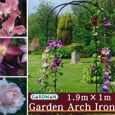 【送料注意】英国 ガードマン(GARDMAN) ガーデンアーチ 1.9m×1m アイアン【あす楽対応】