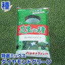 耐暑性に優れた3種特選ミックス ダイヤモンドグリーン 1kg バロネス寒地型 芝生の種 お庭の広さ6〜7.6坪用 オリジナルミックス トールフェスク ケンタッキーブルーグラス ペレニアルライグラス