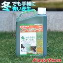 芝生用着色剤 バロネス Kアイグリーン 1kg共栄社/