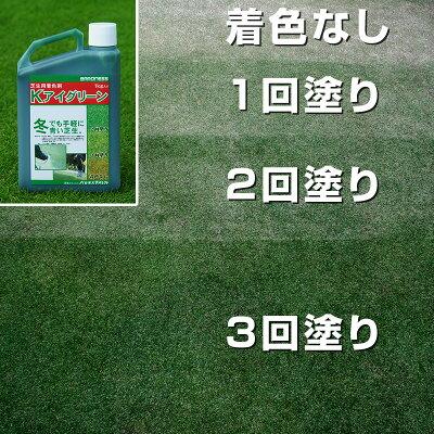 芝生用着色剤Kアイグリーン