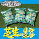 【送料注意】【洗砂】グリーンづくりにコレがいい!バロネス 芝生の目砂・床砂 10kg入り(6.7リットルサイズ)×3袋セット【共栄社】