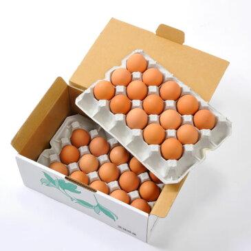 卵 世界大会受賞 たまご 30個入り 生卵 赤玉鶏の王者ボリスブラウンのたまご 卵焼き 玉子焼き 鍋 すき焼き チャーハン 炒飯 うどん おでん たまごスープ にも 最適