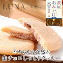 チョコレート 送料無料 生チョコしっとりクッキー「LUNA(ルナ)」3種15個入り ギフト プチギフト 女友達 女の子 女性 お母さん
