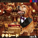 大型犬 タキシード スカーフ ドレスアップ コスプレ ドックウェア ハロウィン クリスマス その1
