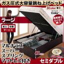 組立設置 跳ね上げ式ベッド 簡単組立 らくらく搬入 ガス圧式 大容量 ...