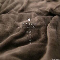 【毛布ブランケット節電対策寝具保温冬フラーナFlanaフランネルファイバー毛布プレーンシングルクリアグローブ】