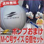 アイアンサンドボール フィールドフォース バッティング トレーニング ソフトボール
