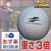 アイアンサンドボール フィールドフォース バッティング トレーニング ソフトボール プレゼント