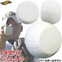 最大2500円引クーポン 3240円で送料無料 野球 練習 ...